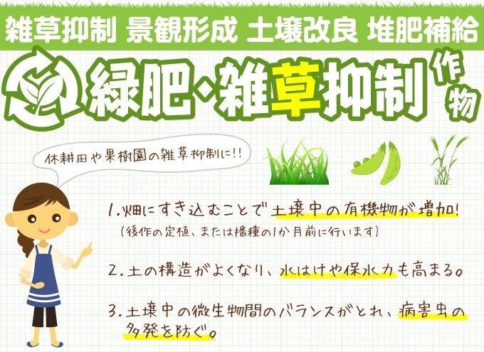 緑肥・雑草抑制