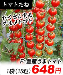 豊産うまトマト