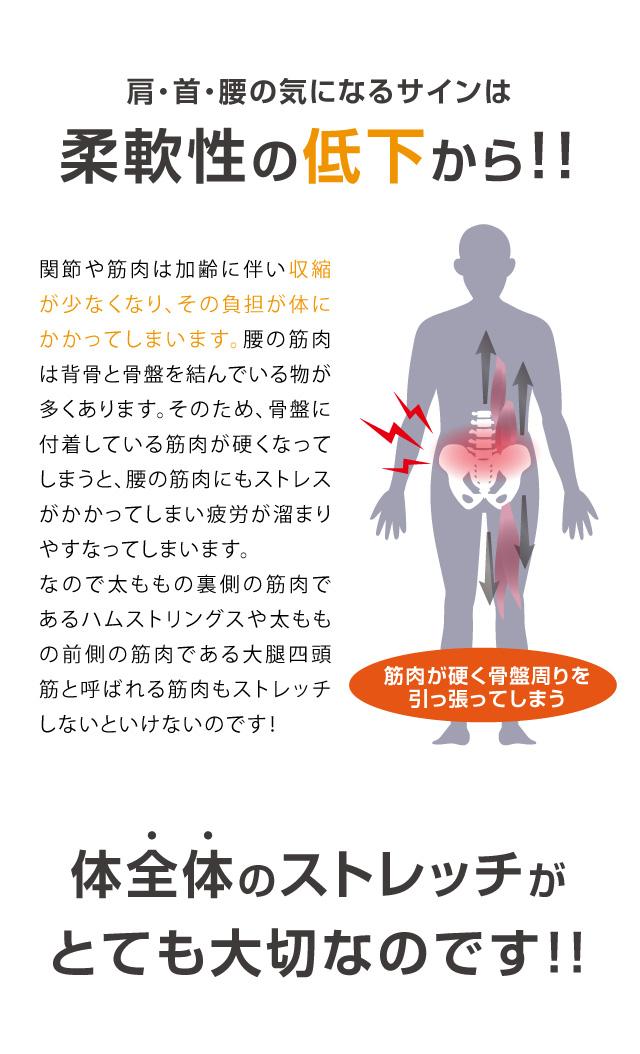中川式ストレッチングベンチ コンプ 肩 首 腰 気になるサイン 柔軟性の低下 筋肉 骨盤周り ストレッチ