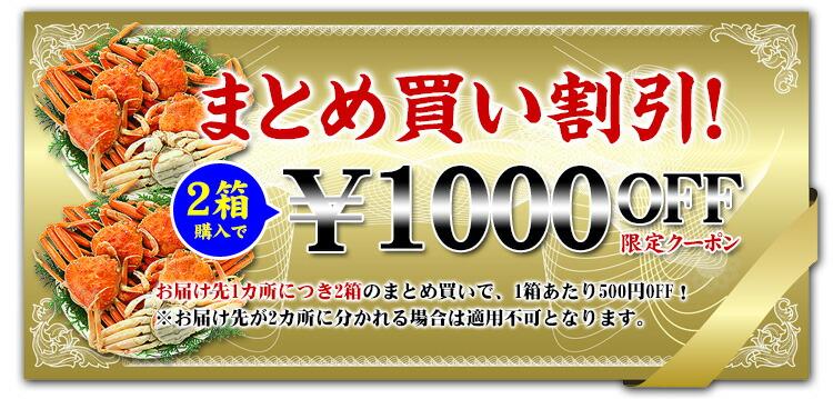 2個で1000円オフクーポン