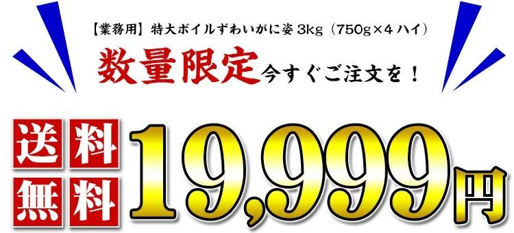 19999円