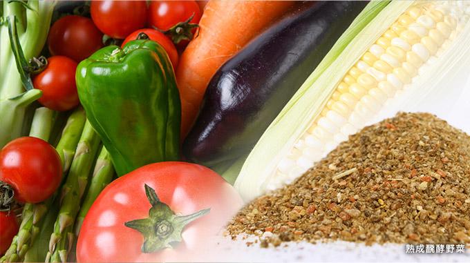 52種類の熟成発酵野菜