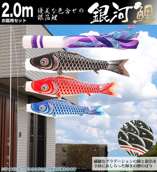 銀河鯉2mお庭用セット