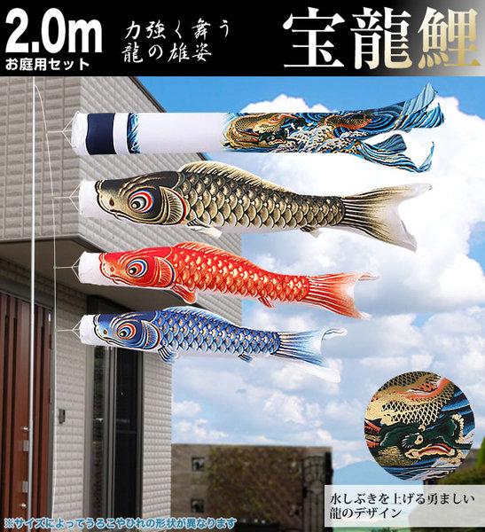 宝龍鯉2mお庭用セット