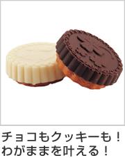 2層チョコ&クッキー 丸型 9個取 シリコン製
