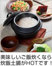 炊飯土鍋 羽釜土鍋 2合炊