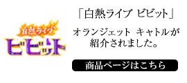 TBSテレビ 白熱ライブビビット