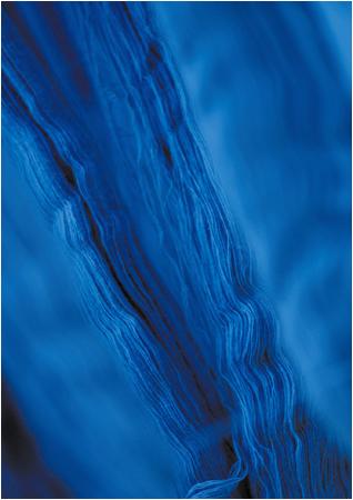 藍染の行程
