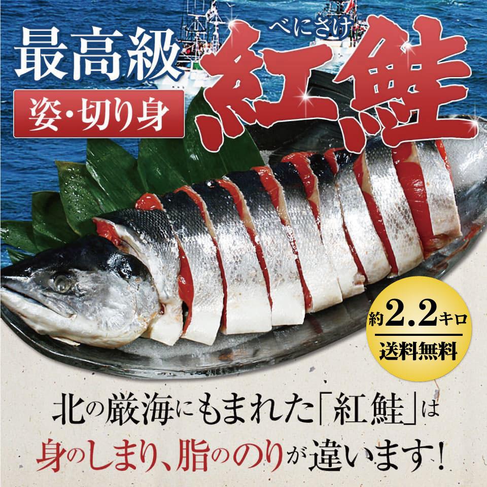 最高級姿切り紅鮭