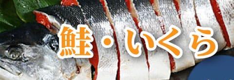 鮭・いくら