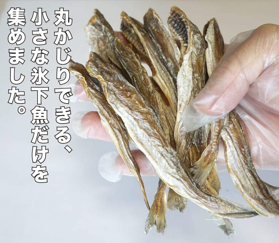 丸ごと食べられる氷下魚