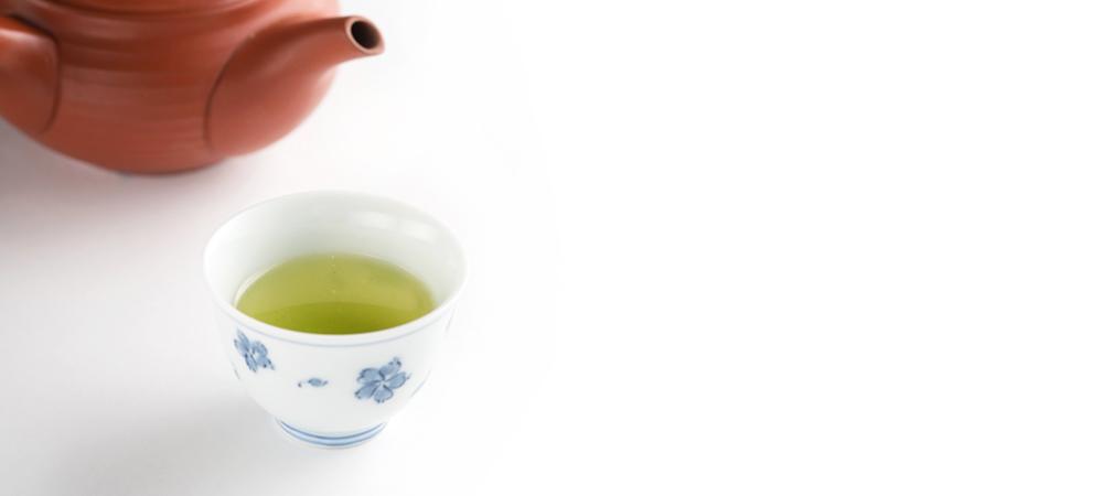 煎茶 藤波