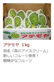アテモヤ 1kg 別名「森のアイスクリーム」 新しいフルーツ発見! 極稀少なフルーツ