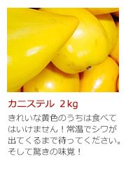 カニステル 2kg きれいな黄色のうちは食べてはいけません! 常温でシワが出てくるまで待ってください。そして驚きの味覚!