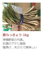 島らっきょう 1kg 沖縄野菜の代表。お酒のアテに最高 塩漬け、天ぷらで美味しい