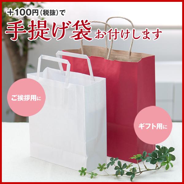 +100円(税抜)で手提げ袋お付けします