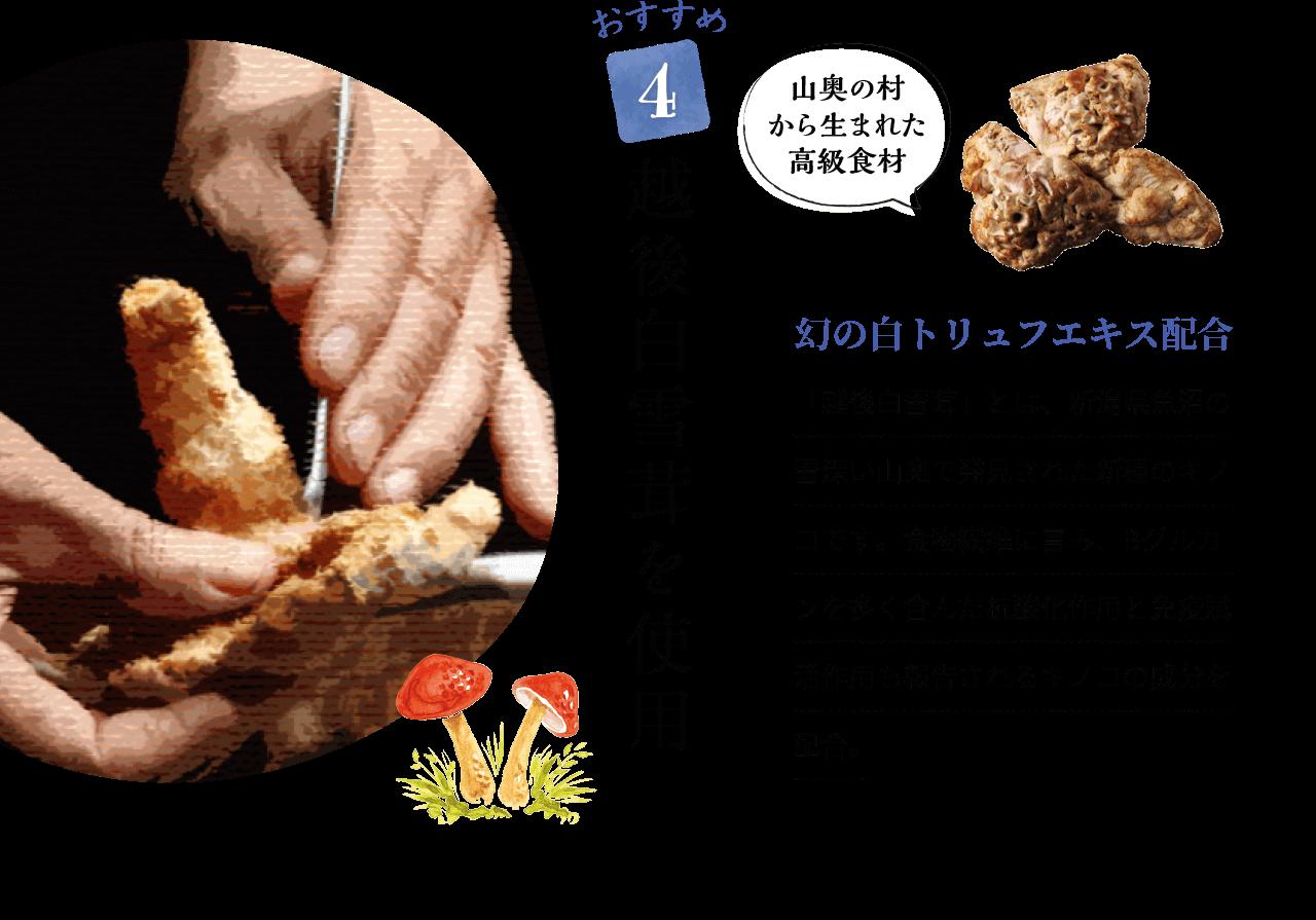 おすすめ4 山奥の村から生まれた高級食材「越後白雪茸」を使用