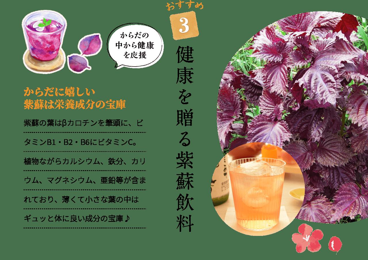 おすすめ3 健康を贈る紫蘇飲料