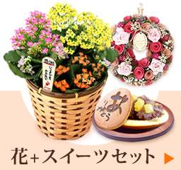 敬老の日プレゼント 花とスイーツセット