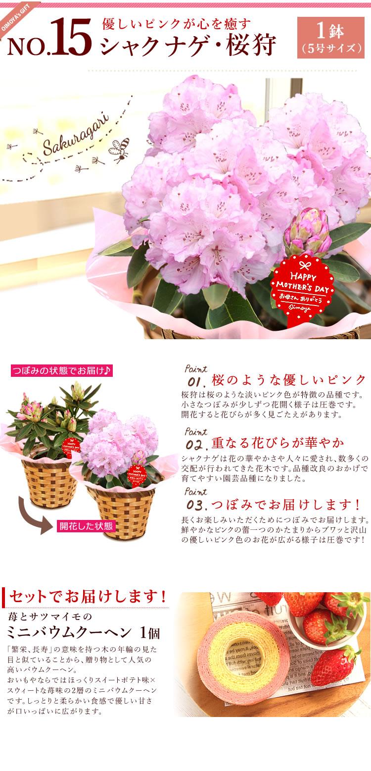 選べる花D_フランネル