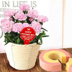 母の日 プレゼント カーネーションとスイーツ ピンク