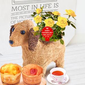母の日 2019年  薔薇わんちゃん【黄色】(3号鉢) スイーツ