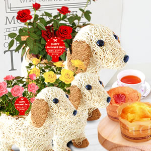 母の日 2019年  薔薇わんちゃん(3号鉢)お菓子