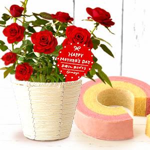 母の日 プレゼント バラとスイーツ 赤