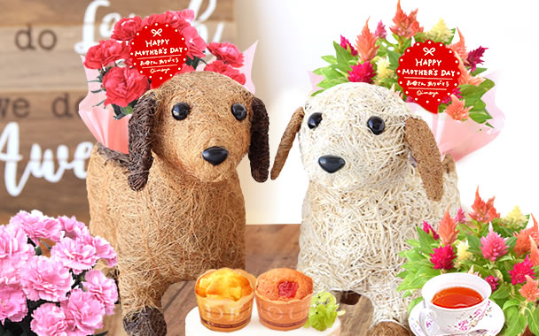 母の日 わんちゃん花鉢&お菓子セット