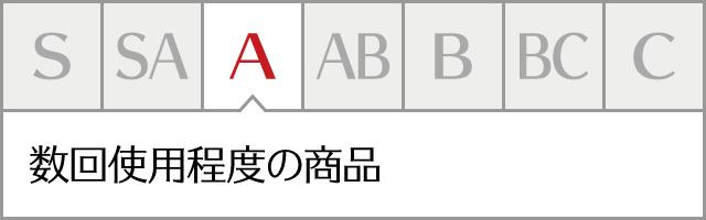 コンディションランク【a】