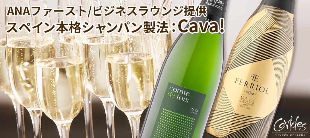 スペイン本格シャンパン製法Cava