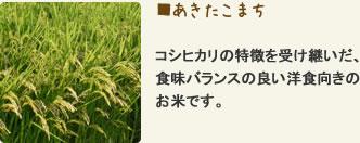あきたこまち コシヒカリの特徴を受け継いだ、食味バランスの良い洋食向きのお米です。