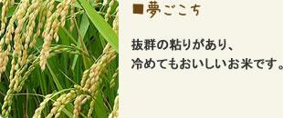 夢ごこち 抜群の粘りがあり、冷めてもおいしいお米です。