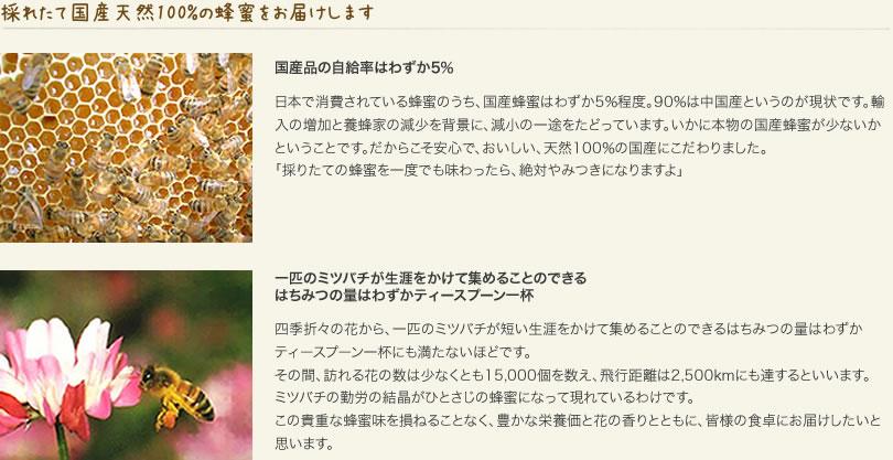 採れたて国産天然100%の蜂蜜をお届けします