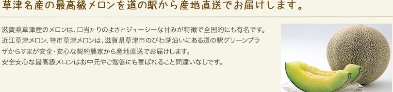 草津名産の最高級メロンを道の駅から産地直送でお届けします。
