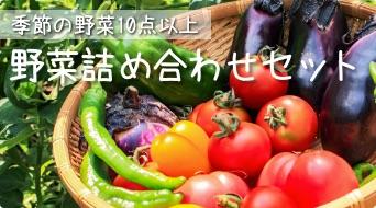滋賀県野菜詰め合わせセット