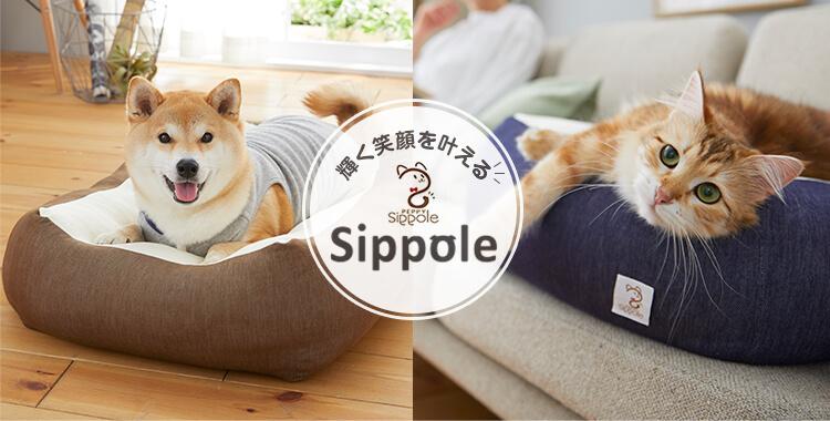 輝く笑顔を叶える sippole