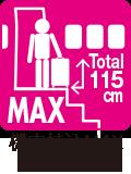 機内持ち込みMAXサイズ(100席以上)