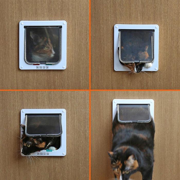 ペットドア Sサイズ 扉 猫 小型犬 キャットドア ドッグ 出入り口 ペット用品 勝手口【ペット用品】◇KL-GD-S