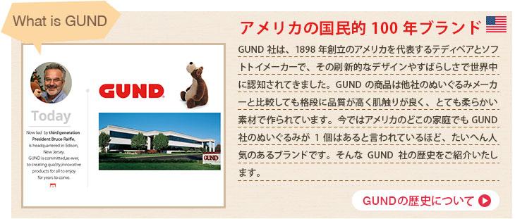 GUNDの歴史