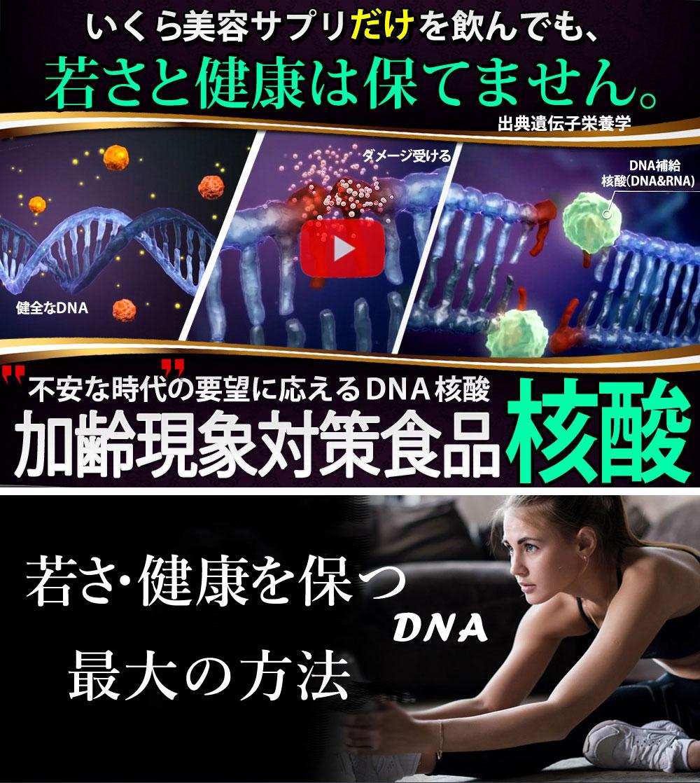 遺伝子レベルで フカヒレコラーゲン&核酸サプリメント