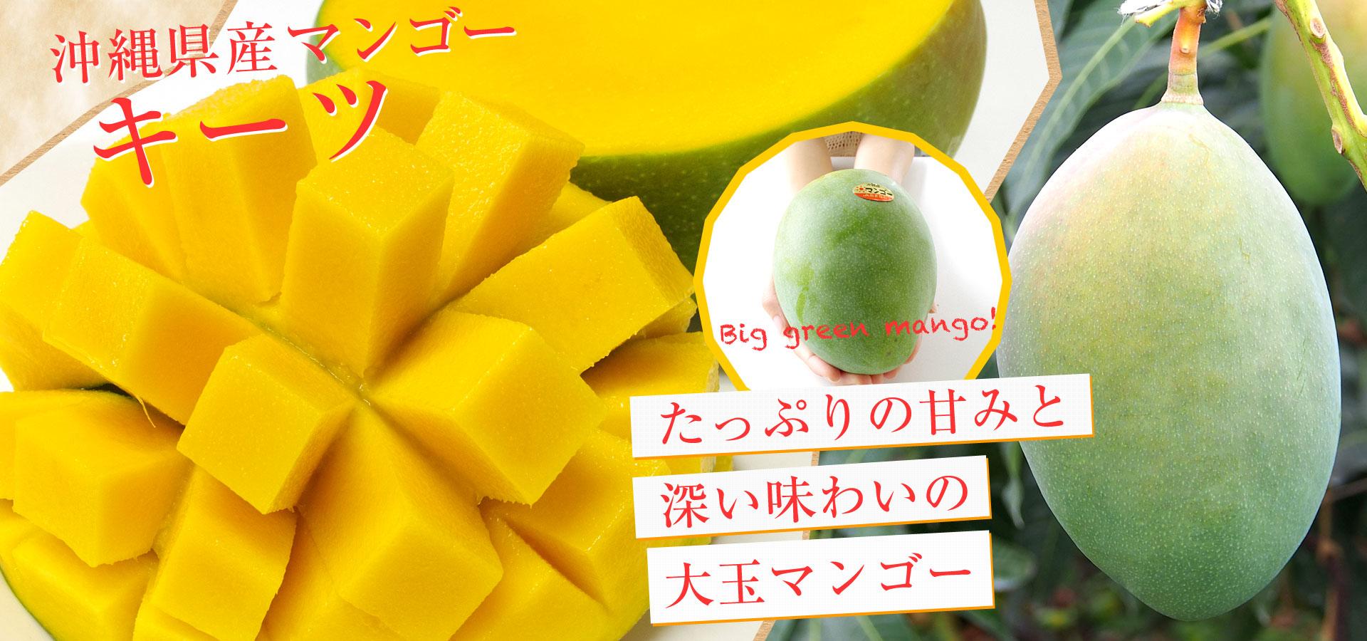 沖縄キーツマンゴー