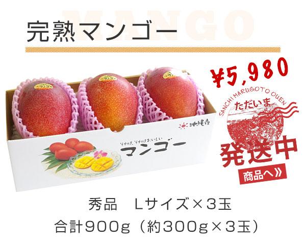 完熟マンゴー 秀品 Lサイズ×3玉