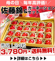 厳選さくらんぼ「佐藤錦」秀品24粒