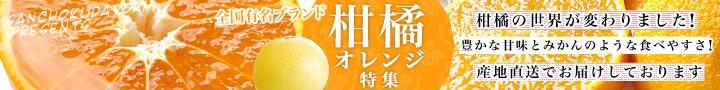 おすすめの柑橘コーナーへ