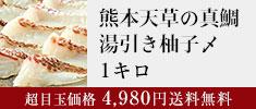 熊本天草の真鯛湯引き柚〆1キロ