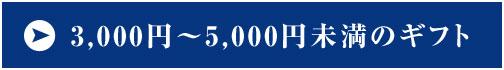 3,000円から5,000円未満のギフト
