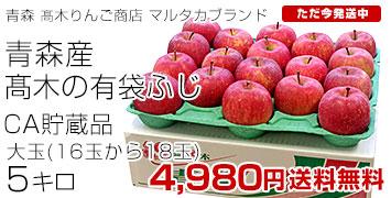 高木のふじりんご16-18玉