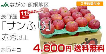 飯綱サンふじ 赤秀5キロ