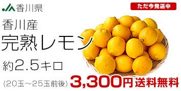 レモン2.5キロ